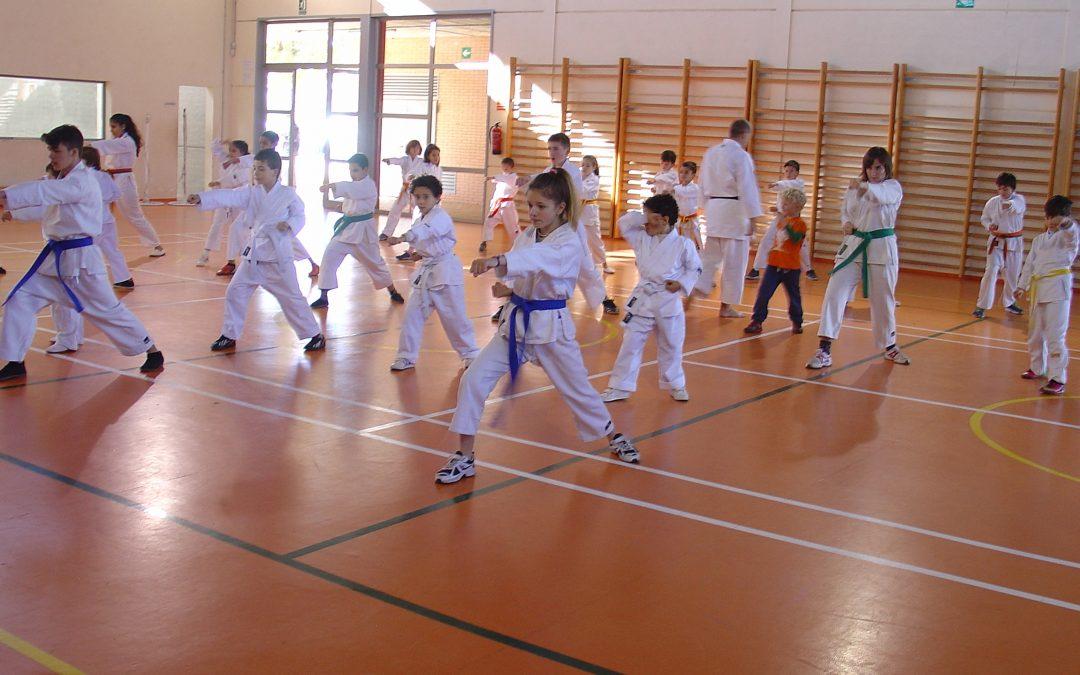 Beneficios de las clases de Karate para niños